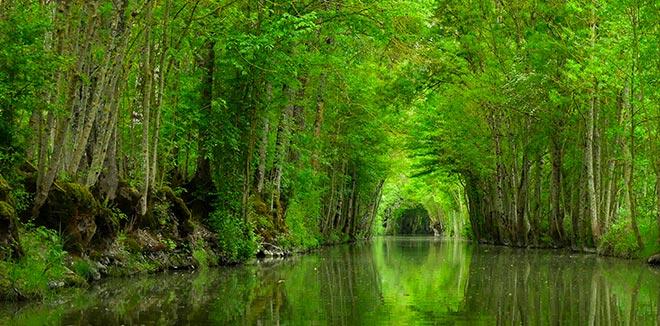 le Marais du PoitevinDeux CampingDomaine Lidon dans Ybgf76Iyv