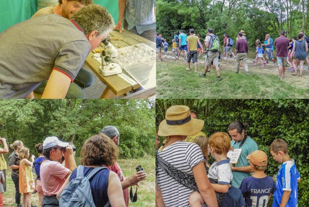 Campsite Marais Poitevin Animations activities